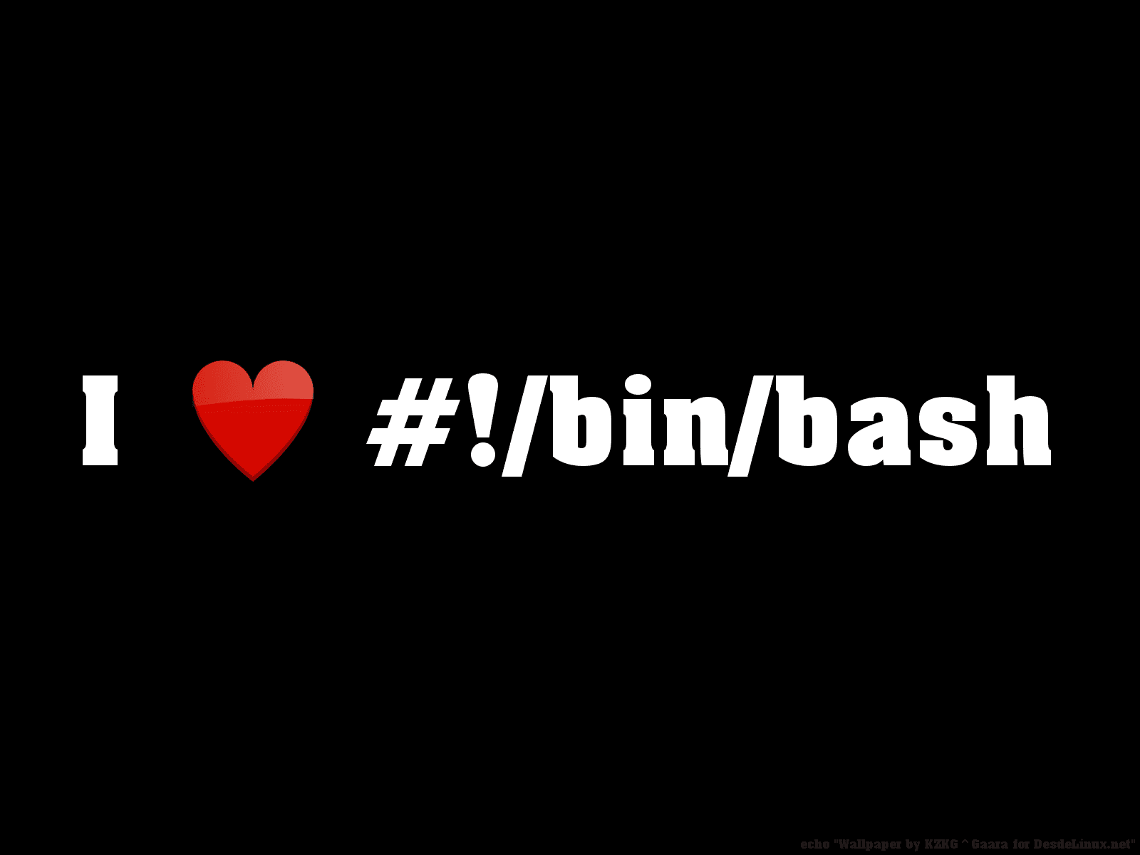 i-love-bin-bash_by-kzkggaara