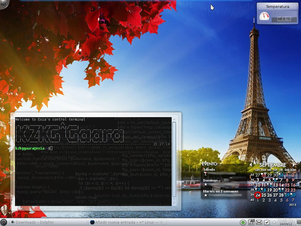 plasmoid-terminal-full-screenshot