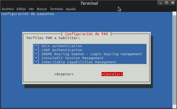 debian7-pam-auth-update