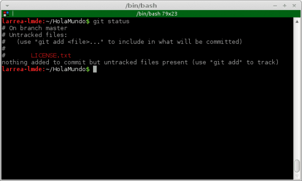 git-status-not-tracked-file