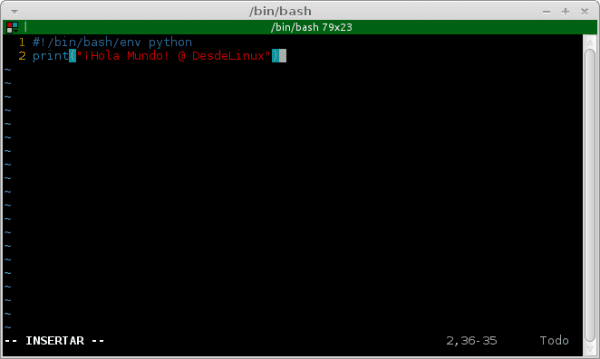 vim-modifying-file