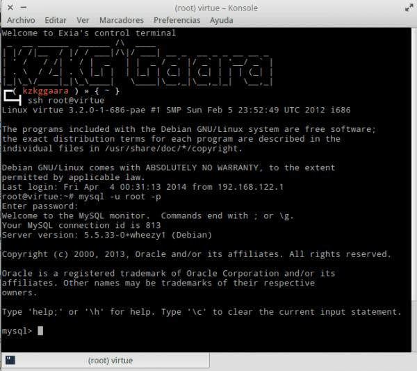 mysql-terminal-acceso