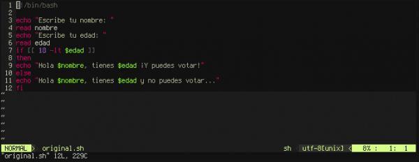 Imagen del código en Vim