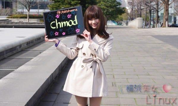 chmod