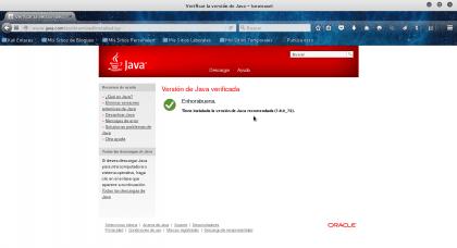 Verificar la versión de Java - Iceweasel_013