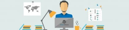 professional-wordpress-development