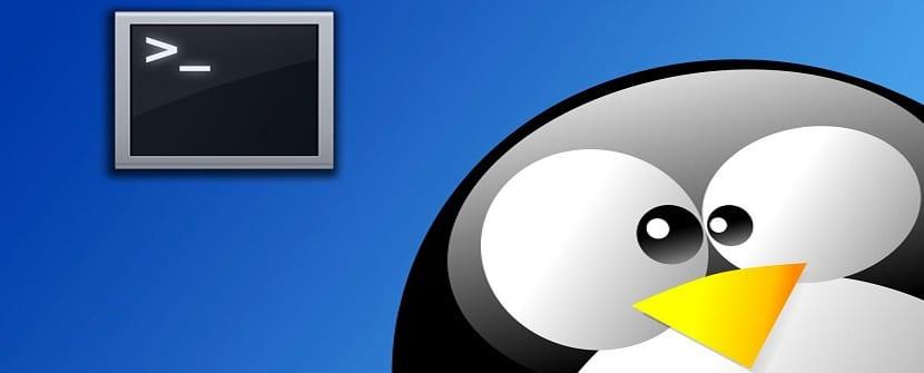 buscar-archivos-en-Linux