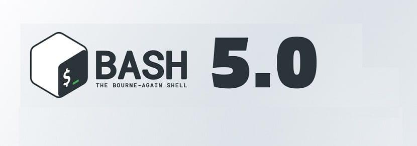 bash-5.0