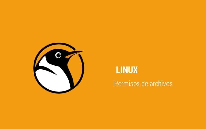 Permisos de Linux para DevOps/BDA: Introducción