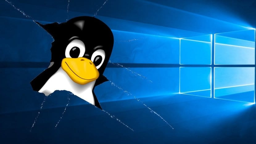 Windows roto y Tux