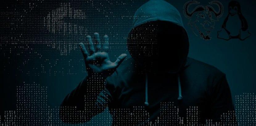 Distros Linux y Ciberseguridad