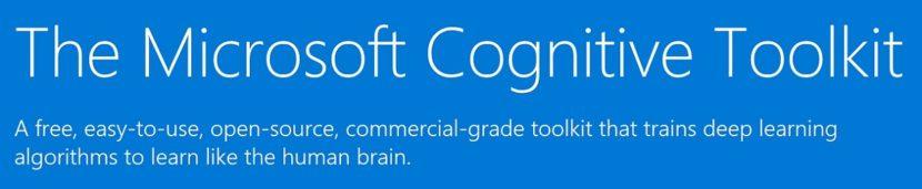 Cognitive Toolkit: Introducción