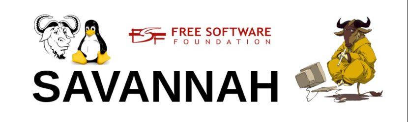 Savannah: Conclusión