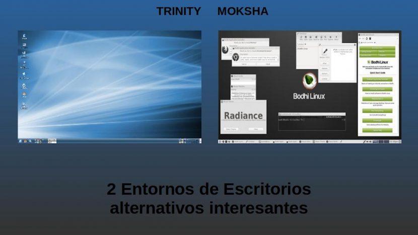 Trinity y Moksha: 2 Entornos de Escritorios alternativos interesantes