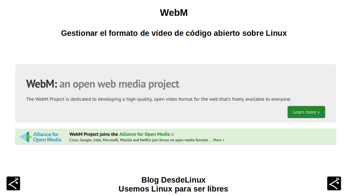WebM: Introducción