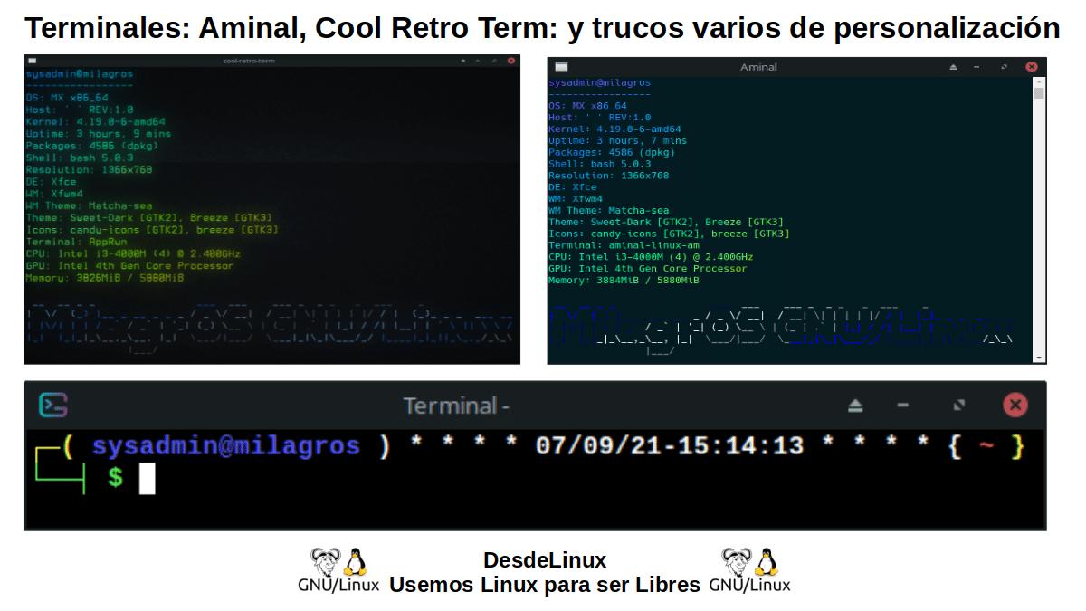 Interesantes Terminales (Consolas) para GNU/Linux
